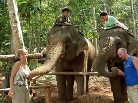 elefanttrekking1